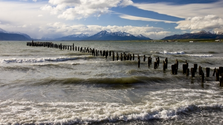 The historical remains of the pier on a lake in Puerto Natales photo