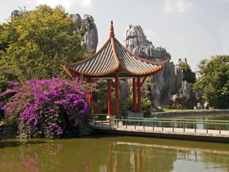 Chinese gazebo located in a beautiful garden on the banks of the pond