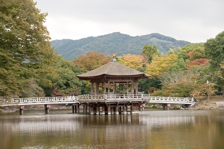 Japanese gazebo located in a beautiful garden - view in autumn