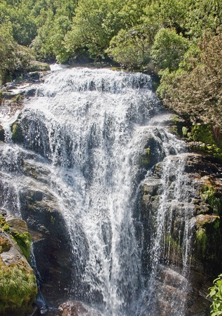 One of the many bautiful waterfalls on the trail Mildford Track photo