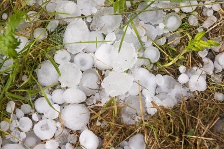 Big ice balls hail on green grass