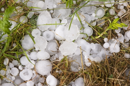 Big ice balls hail on green grass