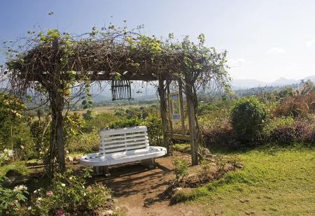 White bench in the garden  photo