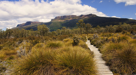 View Track in Cradle Mountain - Tasmania (Australia)