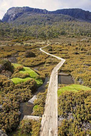 bushwalk: View Track in Walls of Jerusalem - Tasmania (Australia)