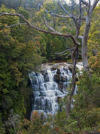 bushwalk: Waterfall in Overland Track - Tasmania Australia Stock Photo