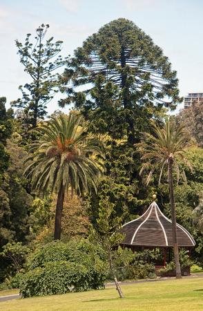 fitzroy: Wooden gazebo  in the Royal Garden in Melbourne