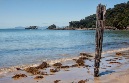 vicinity: Nice beach in Australia in the vicinity of Melbourne
