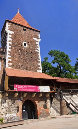 gronostaj: Gallery of ancient art - National Museum in Krakow Poland