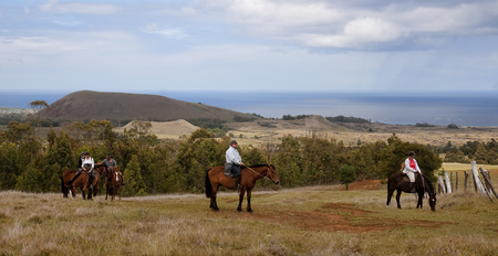 HANGA ROA, ESTER ISLAND, CHILE - NOVEMBER 11, 2015: Tourists visiting the island on horseback on 11 November 2015 in Hanga Roa, Ester Island, Chile.Horseback riding around the island are one of the local sights Editorial