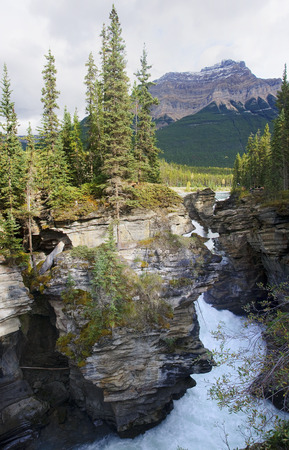 Athabasca Falls near Jasper in Rocky Mountains (Alberta, Canada)