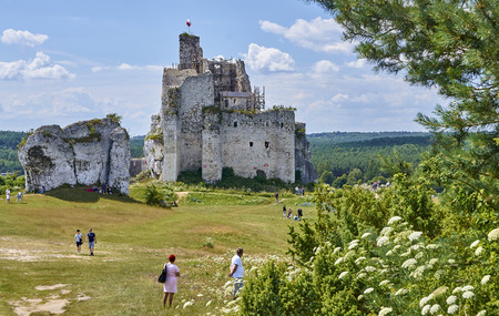 abandon: MIROW, POLAND - JULY 16, 2017: Ruins of medieval castle in Mirow on 16 July 2017 in Mirow, Poland. This castle was built in the days of King Kazimierz Wielki, about the middle of the 14th century.