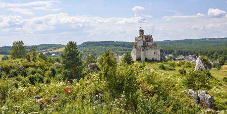 Ruins of medieval castle in Mirow (Poland)