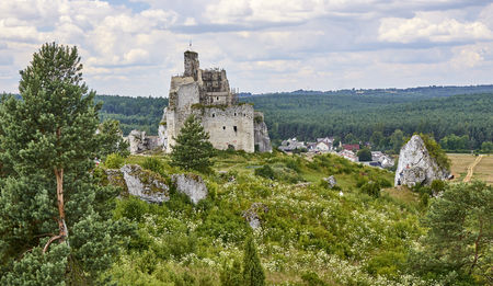 mirow: Ruins of medieval castle in Mirow (Poland)
