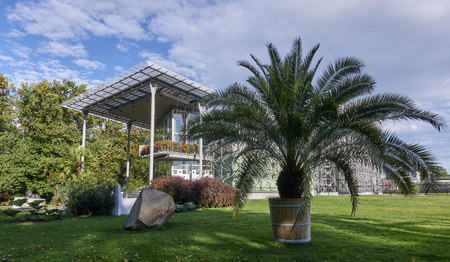 Gliwice (Poland) - Palm House in Chopin Park. The Palm House building is located in a park near the train station in the very center of the city Stock Photo