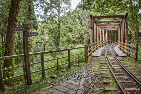 One of the tourist attractions of Alishan is the narrow-gauge railway 版權商用圖片 - 95334326