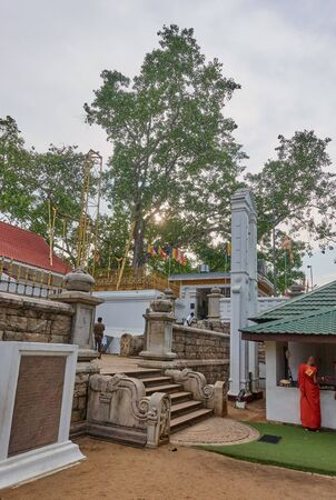 ANURADHAPURA, SRI LANKA - NOVEMBER 26, 2018: The temple of the oldest tree in the world on 26 November 2018 in Anuradhapura, Sri Lanka. It is the oldest capital of Sri Lanka inscribed on the UNESCO