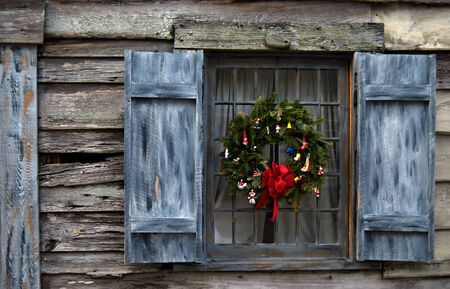 Christmas Reef in Window