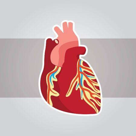 healty: Heart 3