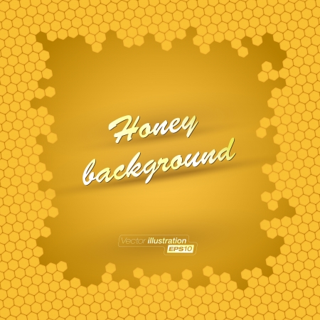 Vector honey background Stock Vector - 14515860