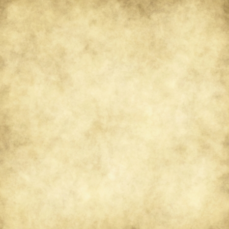 parchment texture: Vector carta di texture