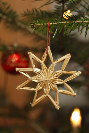Christmas decoration with christmas tree background Stock Photo - 10190629