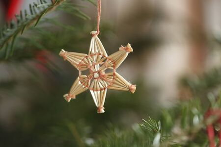natural christmas tree with different decoration Stock Photo - 10535838