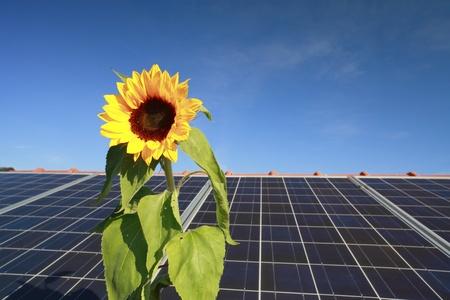 dak stroom met zonnepanelen en zonnebloem symbool