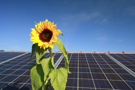 roof power with solar panels and sunflower symbol photo