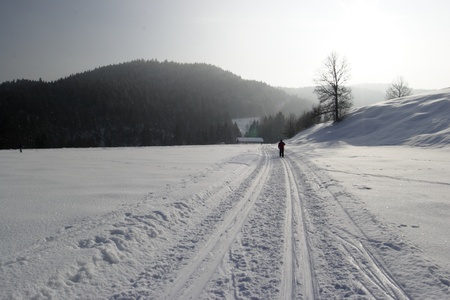 cross country skiing in the german alps photo