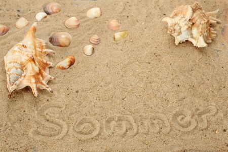 symbolic summer holidays with mussels and sand photo