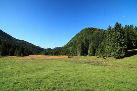 nature landscape in the bavarian alps with blue sky photo