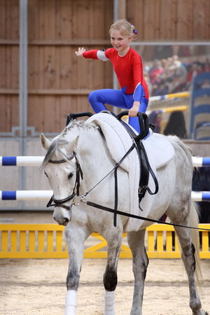 vaulting: young girl is vaulting on a big white horse