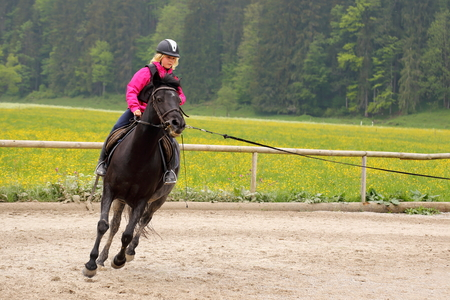 beautiful horse: girl is fast riding on a black pony Stock Photo