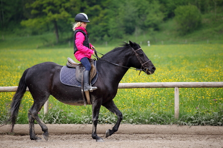 riding girl with black pony at spring time Standard-Bild