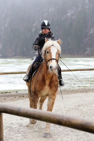 horse sleigh: young girl is riding on a horse in winter