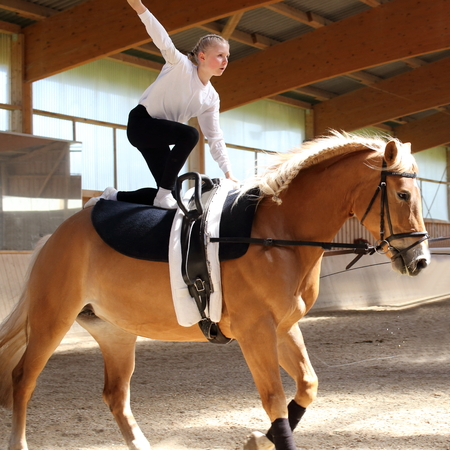 young girl is vaulting on a brown horse indoors Stock Photo