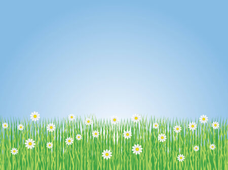 grass area: Spring Landscape with flowers