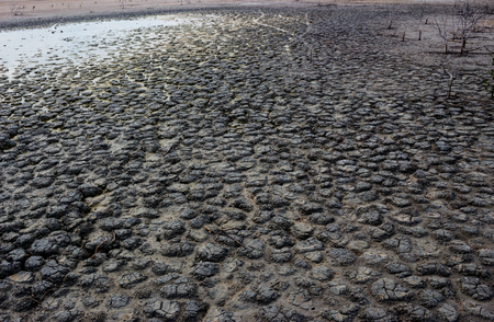 parched: Dry soil Arid, drought land background. Stock Photo
