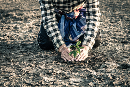 Man planted a tree on a drought-stricken land in hopes of recovering the forest, Drought crisis concept.
