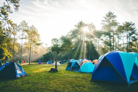 Sunshine in the morning with a camping in the woods. Standard-Bild
