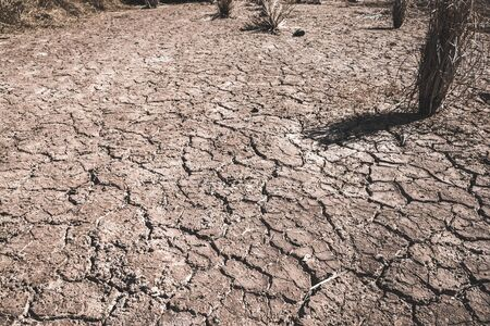The ground cracks caused by drought caused by water shortages.