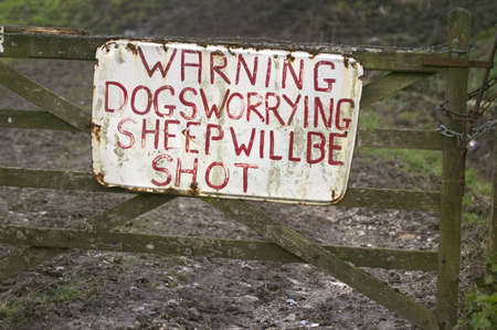 sheep warning: Sign on an old farm gate about dogs and sheep Stock Photo