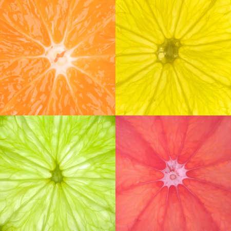 close ups: Image contaning close ups from Orange,Lemon,Lime & Pink Grapefruit slices.