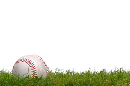 baseball game: A baseball sitting in the grass, shot against a white background. Stock Photo