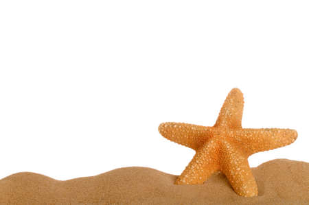 Starfish resting in sand lower frame with empty space above for text, suitable for page footer.