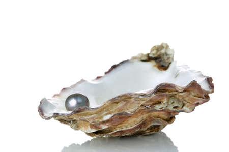 almeja: Pearl Negro en una concha de ostra, aislado en un fondo blanco con la reflexi�n. Foto de archivo