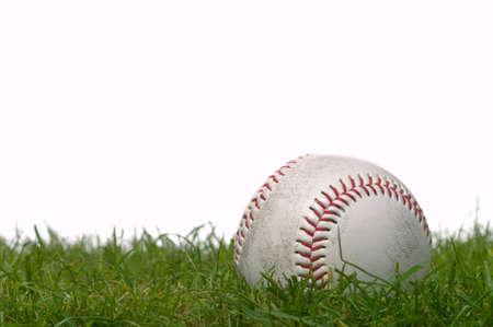 Studio shot of a baseball on grass, white background. photo