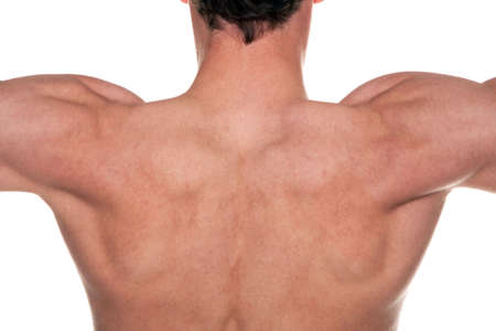 flexed: A mans back with his muscles flexed.