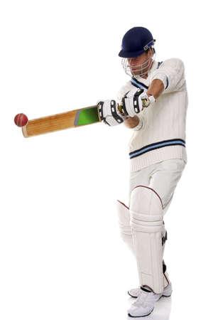 cricket: Cricket giocando un colpo, sparo su sfondo bianco.
